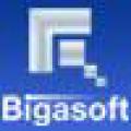 Bigasoft Corporation